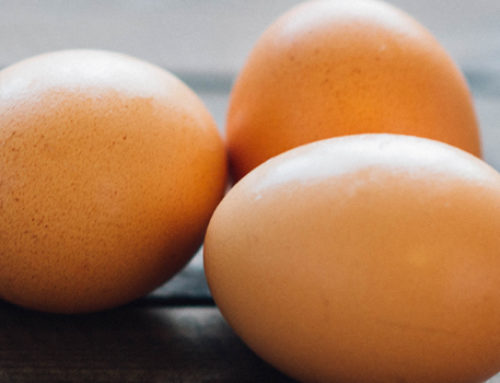 EBV and Eggs: What You Need to Know about Eggs if you Have EBV
