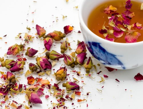 Herbal Teas for EBV and other Viral Infections: Using Teas as Remedies