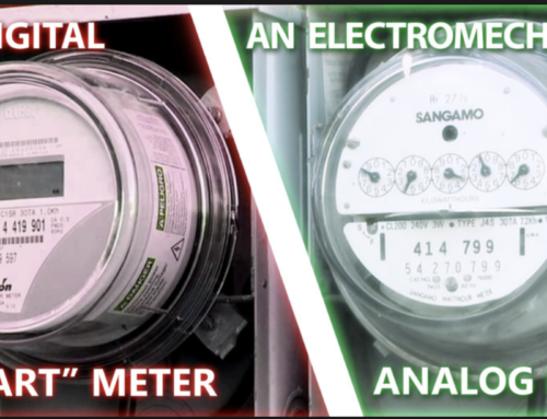 EBV and EMF: New Concepts and Updates